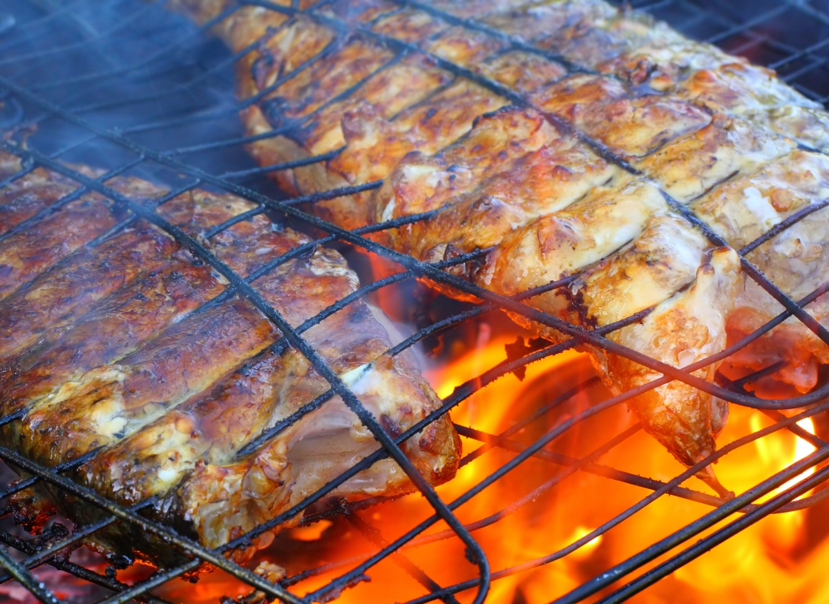 Fish grill broil seasoning for Fish and grill